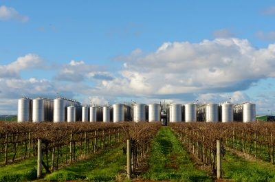 Griffith Tours New South Wales - photo of a vineyard with large row of stainless steel tanks in the background.